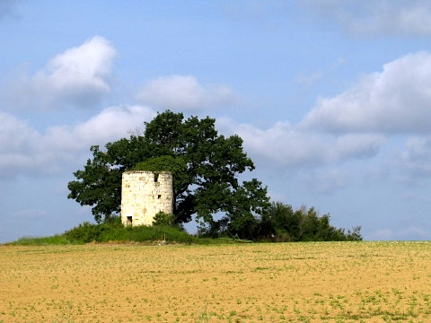 Countryside near Lectoure