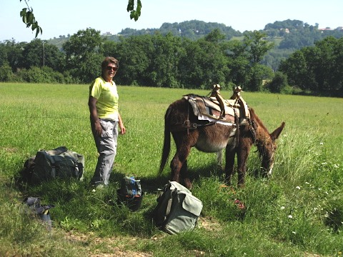 A pilgrim and her donkey have a rest