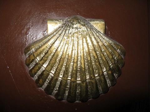 Saint James Scallop