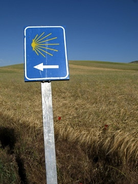 Scallop way marker on the Meseta
