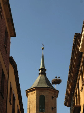 Stork nest on the church in Najera