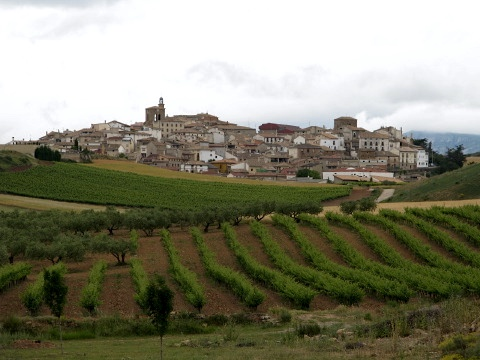 View towards the village of Cirauqui