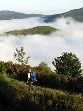A lone walker on the Camino