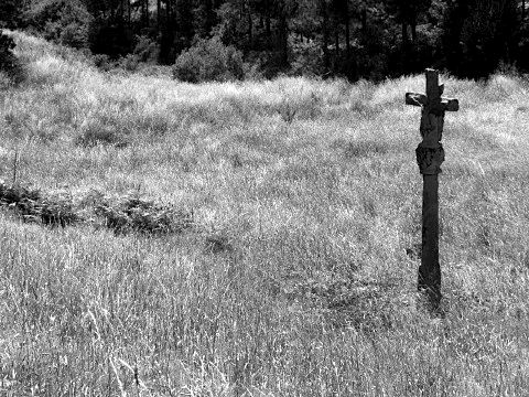 An old stone cross in the middle of a field