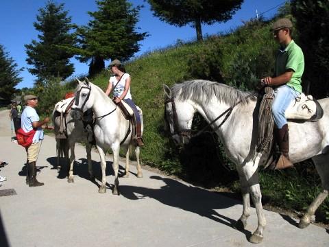 Horses outside the alberge in O Cebreiro