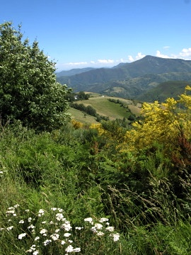 Looking back to Castile and Leon from the Galician border