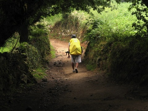 Ray strides out along the Camino