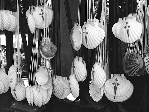 Saint James scallop shells for sale before Santiago de Compostela