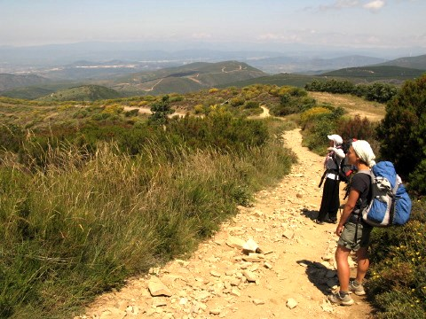 Serena and Serena gaze over the vista towards Ponferrada