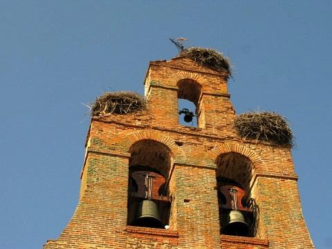 Stork nests in Villar de Mazarife