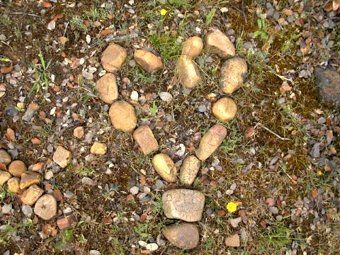 The Heart of the Camino