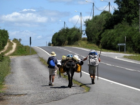 Two people and a donkey return from Finisterre